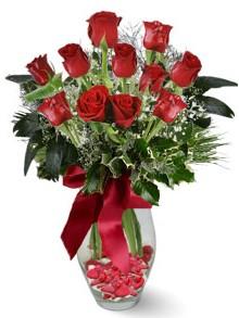 9 adet gül  Çorum internetten çiçek siparişi  kirmizi gül