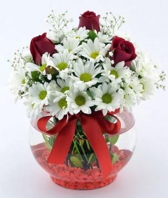 Fanusta 3 Gül ve Papatya  Çorum internetten çiçek siparişi
