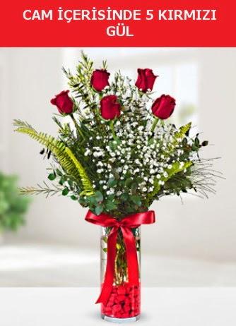Cam içerisinde 5 adet kırmızı gül  Çorum çiçekçiler