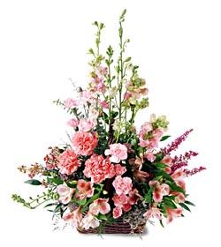 Çorum çiçekçi mağazası  mevsim çiçeklerinden özel