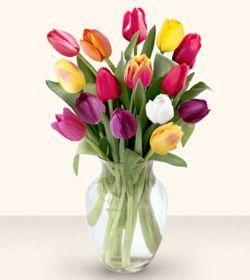 Çorum çiçek siparişi vermek  13 adet cam yada mika vazoda laleler