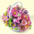 Çorum çiçek yolla , çiçek gönder , çiçekçi   bir sepet dolusu kir çiçegi  Çorum çiçek gönderme