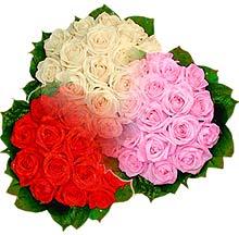 3 renkte gül seven sever   Çorum hediye çiçek yolla
