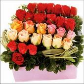 15 adet renkli gül ve cam   Çorum internetten çiçek satışı