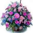 karisik mevsim kir çiçekleri  Çorum çiçek gönderme