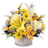 sadece sari çiçek sepeti   Çorum çiçek gönderme