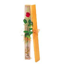 ince  kutuda  1  gül   Çorum çiçekçi telefonları