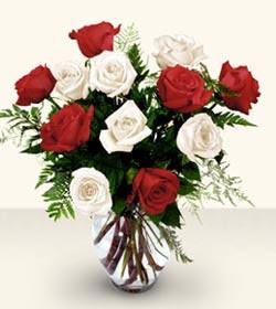 Çorum anneler günü çiçek yolla  6 adet kirmizi 6 adet beyaz gül cam içerisinde