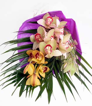 Çorum 14 şubat sevgililer günü çiçek  1 adet dal orkide buket halinde sunulmakta