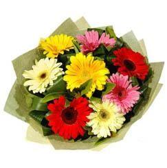9 adet karisik gerbera demeti  Çorum güvenli kaliteli hızlı çiçek
