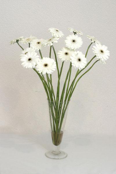 Çorum güvenli kaliteli hızlı çiçek  cam vazo içerisinde 17 adet sade gerbera