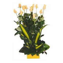 12 adet beyaz gül aranjmani  Çorum yurtiçi ve yurtdışı çiçek siparişi