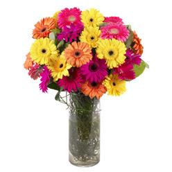 KARISIK GERBERALARDAN CAM VAZO TANZIMI  Çorum online çiçekçi , çiçek siparişi