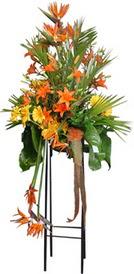 Çorum çiçekçiler  perförje tanzimi dügün nikah ve açilislara