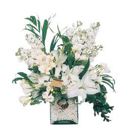 Çorum online çiçek gönderme sipariş  sadece beyazlardan olusmus mevsim cam yada mika tanzim