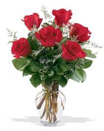 Çorum çiçek gönderme  7 adet kirmizi gül cam yada mika vazoda sevenlere