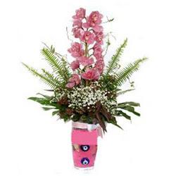 Çorum çiçek siparişi sitesi  cam yada mika vazo içerisinde tek dal orkide çiçegi