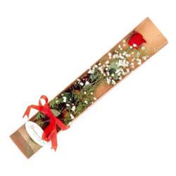 Çorum hediye çiçek yolla  Kutuda tek 1 adet kirmizi gül çiçegi