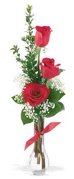 Çorum 14 şubat sevgililer günü çiçek  mika yada cam vazoda 3 adet kirmizi gül