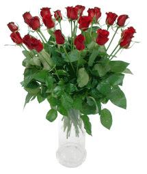 Çorum çiçek , çiçekçi , çiçekçilik  11 adet kimizi gülün ihtisami cam yada mika vazo modeli