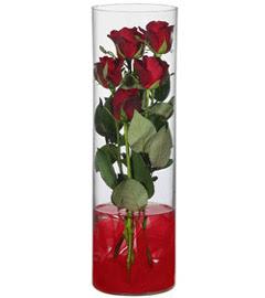 cam içerisinde 7 adet kirmizi gül  Çorum çiçek siparişi vermek