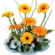 camda gerbera ve mis kokulu kir çiçekleri  Çorum çiçek , çiçekçi , çiçekçilik