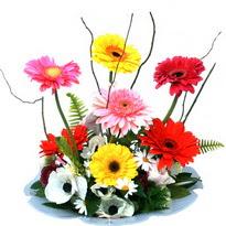 Çorum çiçek siparişi sitesi  camda gerbera ve mis kokulu kir çiçekleri
