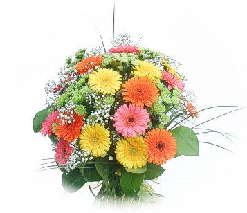 13 adet gerbera çiçegi buketi  Çorum cicekciler , cicek siparisi