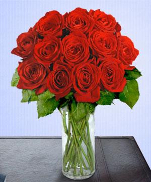 Anneme 12 adet cam içerisinde kirmizi gül  Çorum çiçekçiler