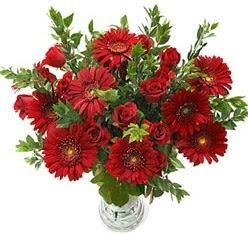 5 adet kirmizi gül 5 adet gerbera aranjmani  Çorum çiçek siparişi sitesi