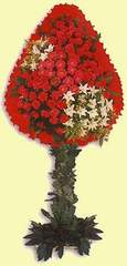 Çorum çiçek satışı  dügün açilis çiçekleri  Çorum çiçek mağazası , çiçekçi adresleri