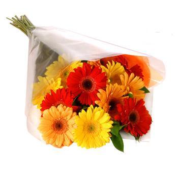 Karisik renklerde gerbera buketi  Çorum 14 şubat sevgililer günü çiçek