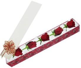 Çorum internetten çiçek siparişi  kutu içerisinde 5 adet kirmizi gül