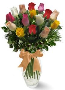 15 adet vazoda renkli gül  Çorum internetten çiçek siparişi