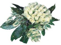 Çorum online çiçek gönderme sipariş  9 Beyaz gül Özel kisiler için