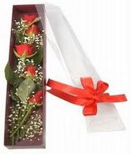kutu içinde 5 adet kirmizi gül  Çorum online çiçek gönderme sipariş