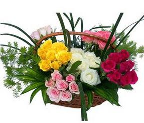 Çorum çiçekçi mağazası  35 adet rengarenk güllerden sepet tanzimi