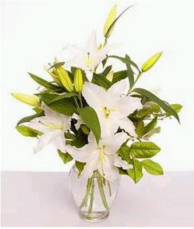 Çorum çiçek satışı  2 dal cazablanca vazo çiçeği