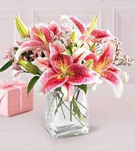 2 dal kazablanka görsel vazosu  Çorum çiçekçiler