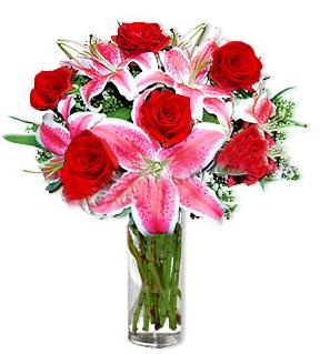 Çorum çiçekçi telefonları  1 dal cazablanca ve 6 kırmızı gül çiçeği