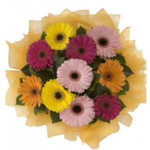 Çorum çiçek yolla  11 adet karışık gerbera çiçeği buketi