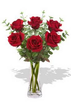 Çorum internetten çiçek satışı  6 kırmızı gül vazosu