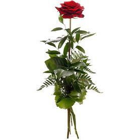 Çorum İnternetten çiçek siparişi  1 adet kırmızı gülden buket