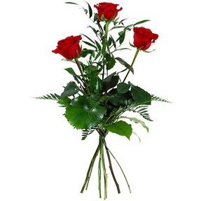 Çorum anneler günü çiçek yolla  3 adet kırmızı gülden buket