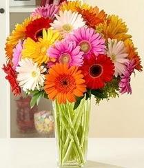Çorum kaliteli taze ve ucuz çiçekler  15 adet gerbera çiçek vazosu