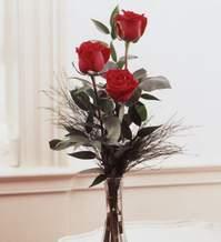 Çorum internetten çiçek siparişi  Vazoda 3 adet güzel gül