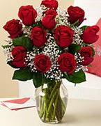 Sevgilime hediye 9 adet 1.ci kalite gül  Çorum çiçek online çiçek siparişi