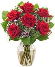 Kız arkadaşıma hediye 6 kırmızı gül  Çorum online çiçek gönderme sipariş
