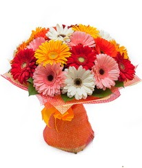 Renkli gerbera buketi  Çorum çiçek online çiçek siparişi