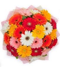 15 adet renkli gerbera buketi  Çorum çiçek yolla , çiçek gönder , çiçekçi